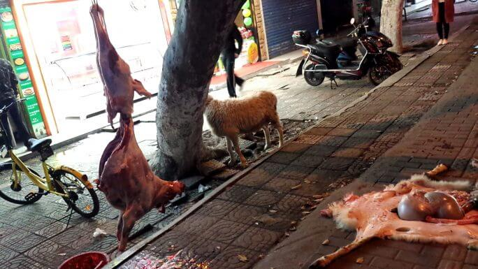店頭で羊が捌かれる(グロ注意) 参考画像