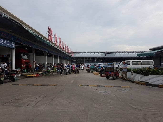 上海写真集Part2 参考画像