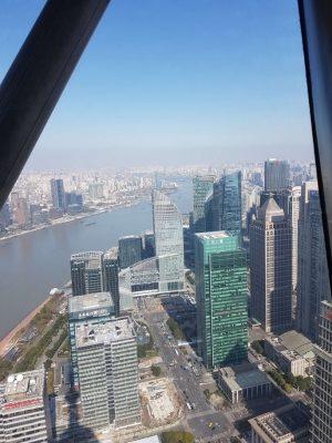 上海OSHIMAツアー 参考画像