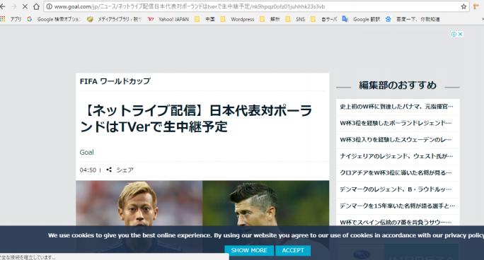 もう一つの戦い!サッカーワールドカップ 参考画像