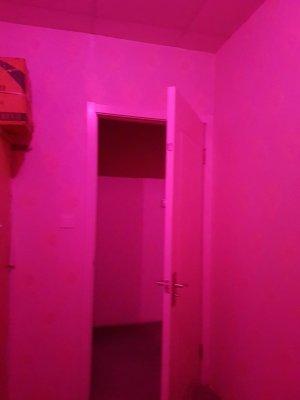 エロ浴室を極める!(上海) 参考画像