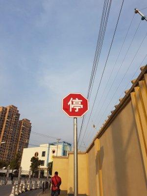 桜を探して(桜花坊を探して)~上海最強の置屋 参考画像